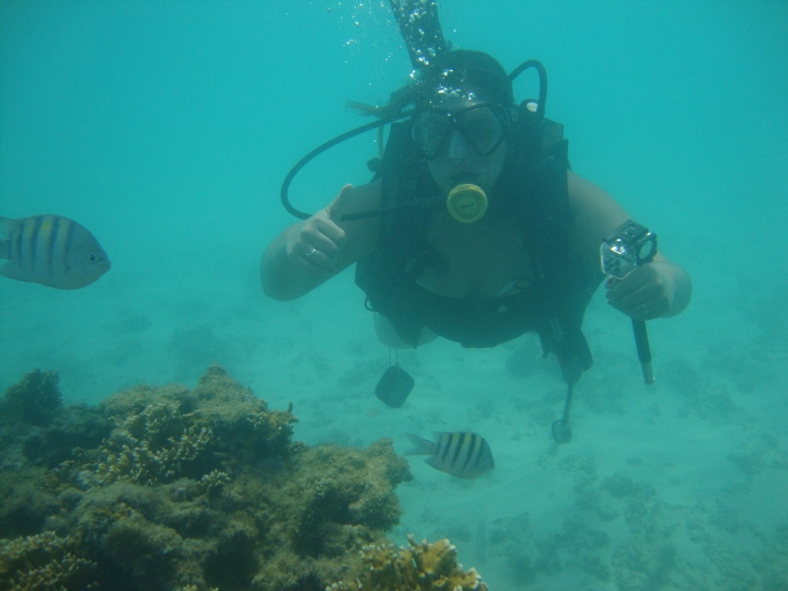 Mergulho em Maragogi